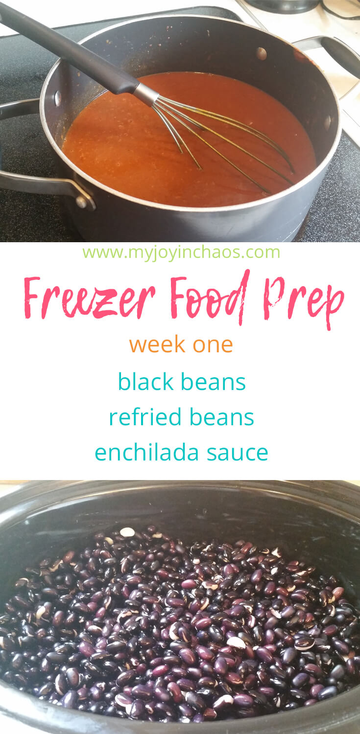Freezer cooking black beans, refried beans, enchilada sauce recipes