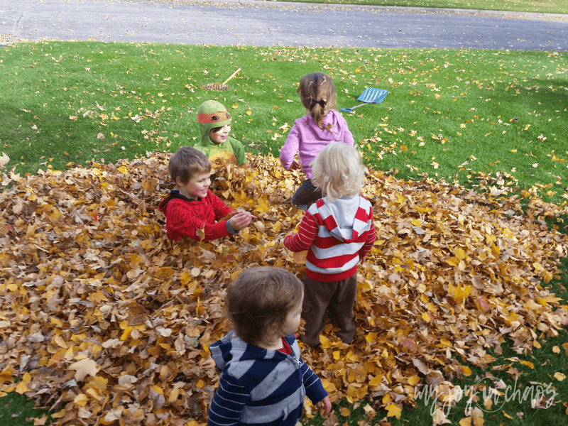 Jumping in leaves is the ultimate free activity for kids during the fall season. See what other fun activities, food, and fashion you don't want to miss this fall.