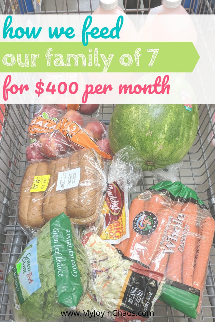 Frugal Grocery Budget for a Family of 7