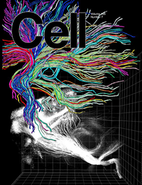 On tCELL