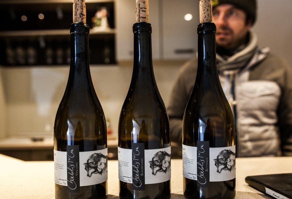 Image c.o.: McCarus Beverage Company