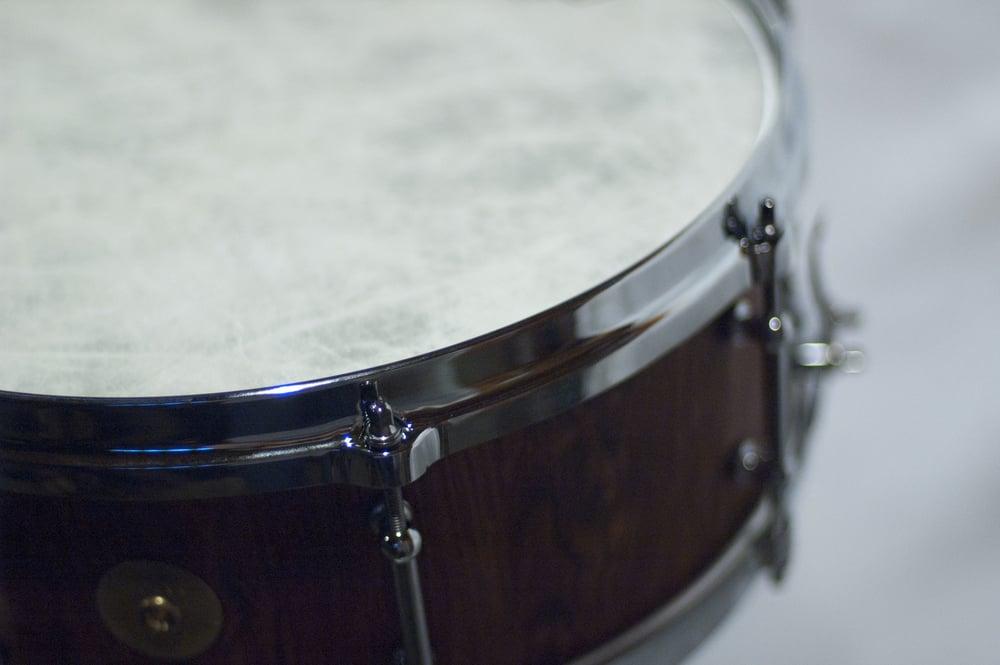 Snare 0006 Drum2.jpg