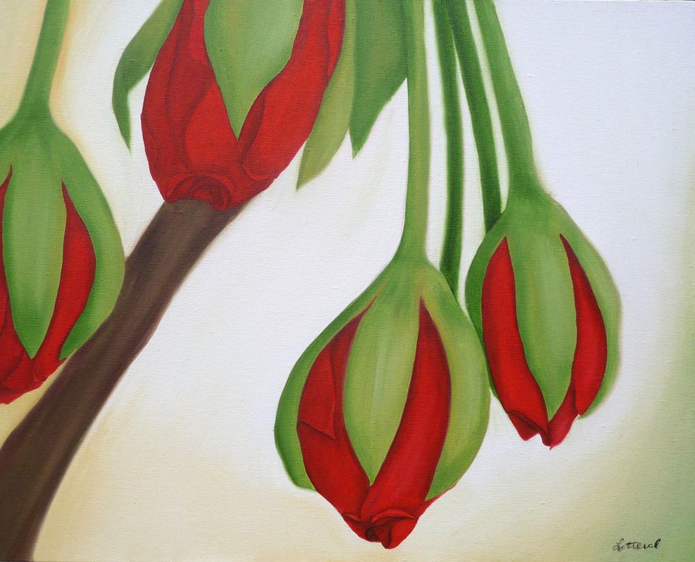 geranium8.jpg