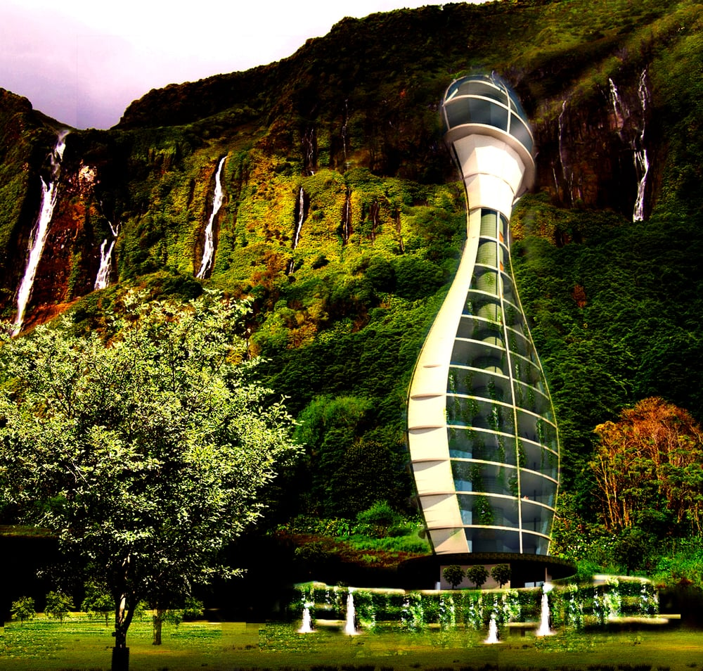 Pandora Jungle Perspective copy.jpg