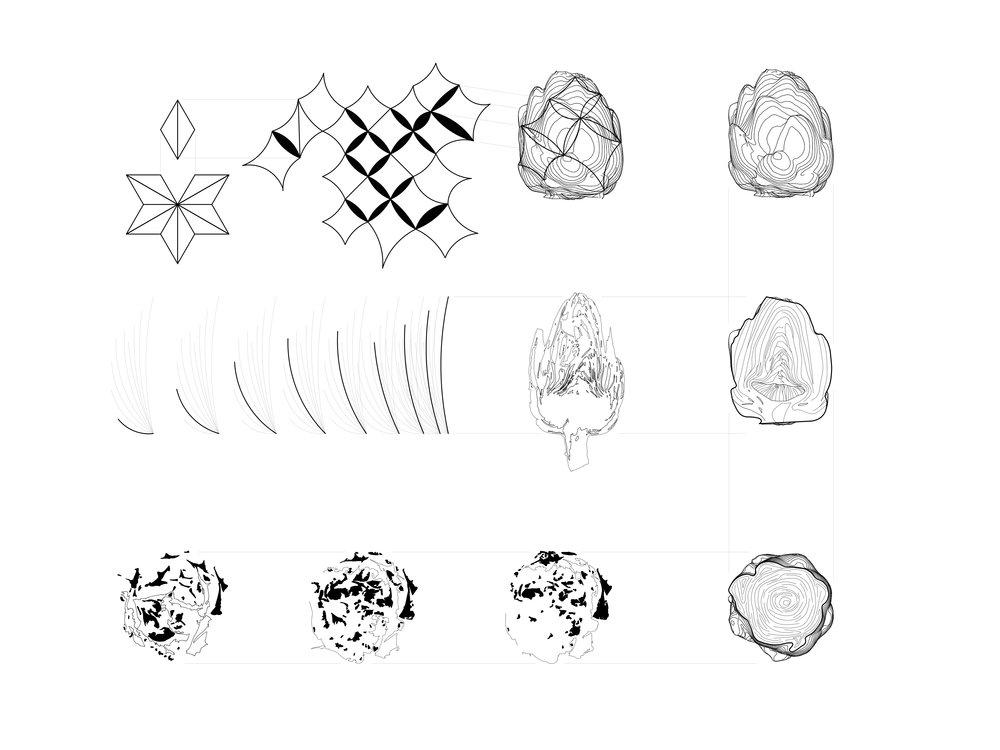 Skin Drawing 01.jpg