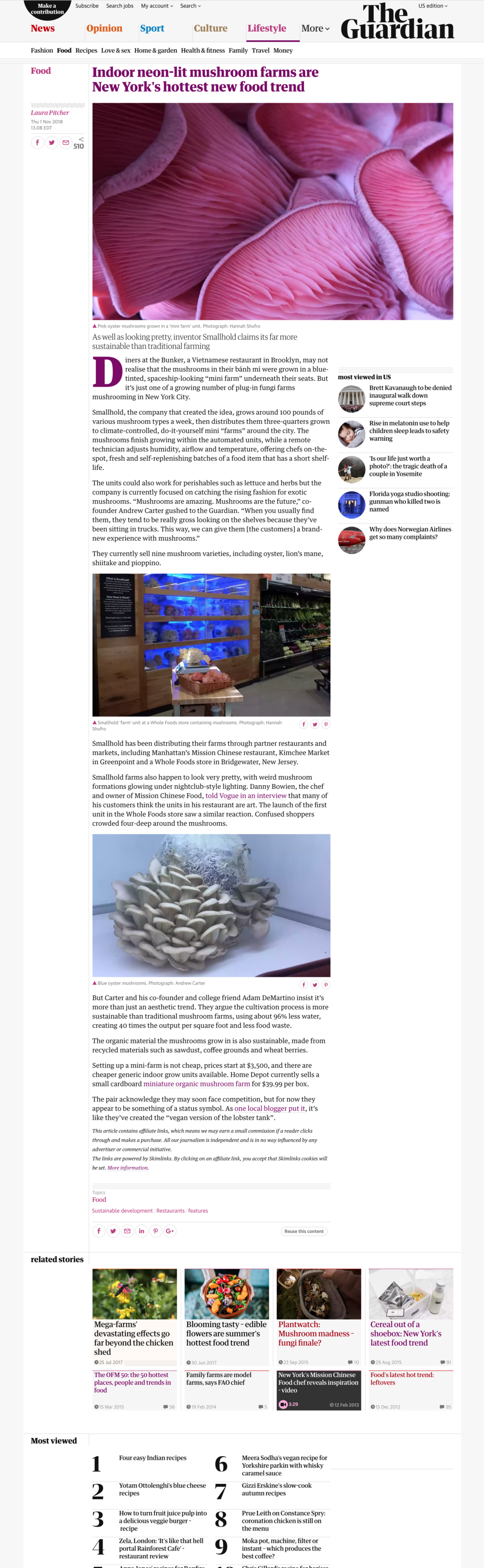 Indoor neon-lit mushroom farms are New York's hottest new food trend   Food   The Guardian.png