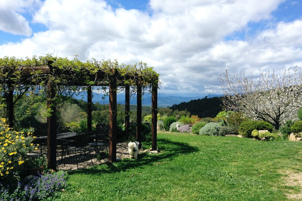 The view from our organic garden is simply stunning.