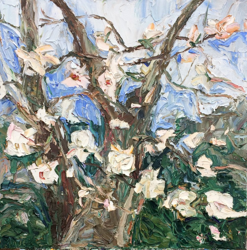 Tulip Tree 1 - Watch the plein air painting video as a time-lapse or enjoy the full length. The spontaneity of nature in spring-time is emphasized by the texture and thickness of the paint. The painting is loose and gestural abstractly representing the presence of the tree and the liveliness of spring. Enjoy the videos! Click on the image to see the videos.