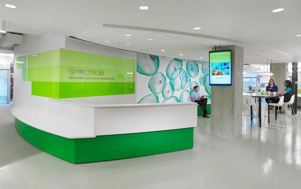 Spectrum<a href=/spectrum>→</a><strong>Full interior tenant renovation of a shell space</strong>