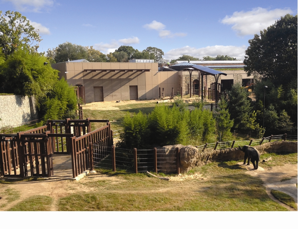 Copy of National Zoo - Elephant Community Center<a href=/elephant-community-center>→</a><strong>LEED Gold Certified</strong>