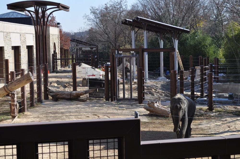 Elephant Community Center - National Zoo, Washington, dC - Smithsonian InstitutionRehabilitation, restoration, and upgrade the Elephant Community Center