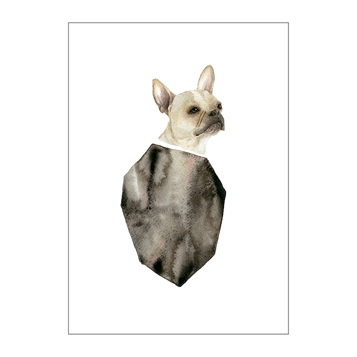 The French Bulldog on paper