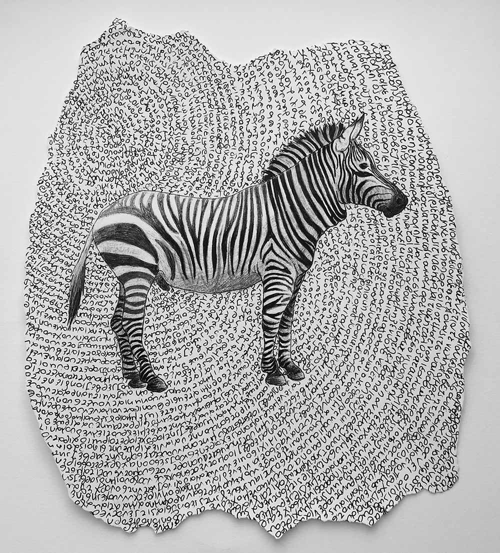 Zebra with handwritten text