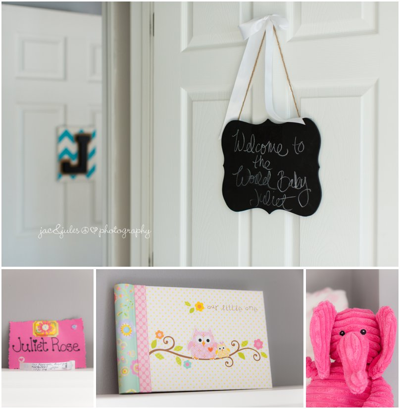 Newborn baby girl nursery decor