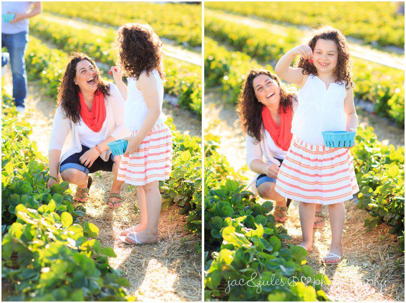 new-egypt-nj-family-photographer-photographs-strawberry-picking-at-hallocks-upick-farm-photo.jpg