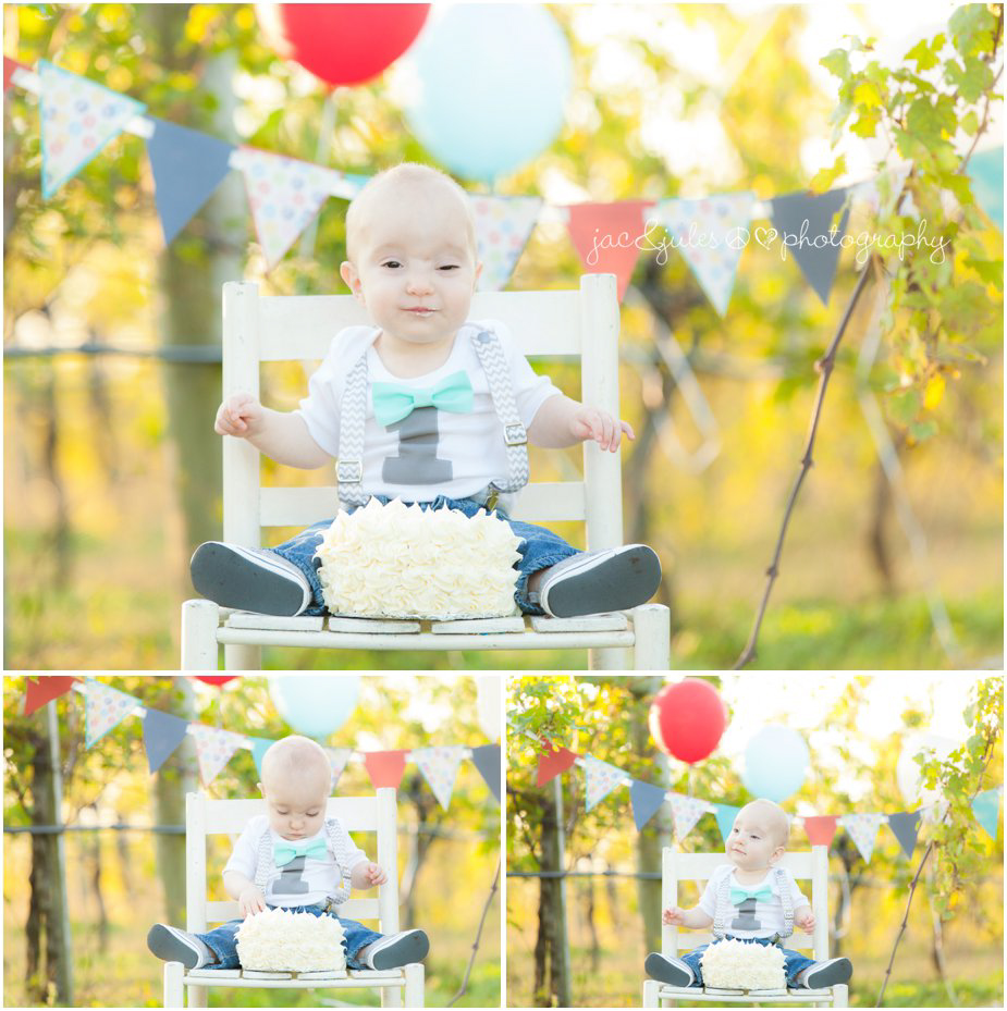 1yr old and his 1st birthday cake at Laurita Winery in NJ photographed by JacnJules