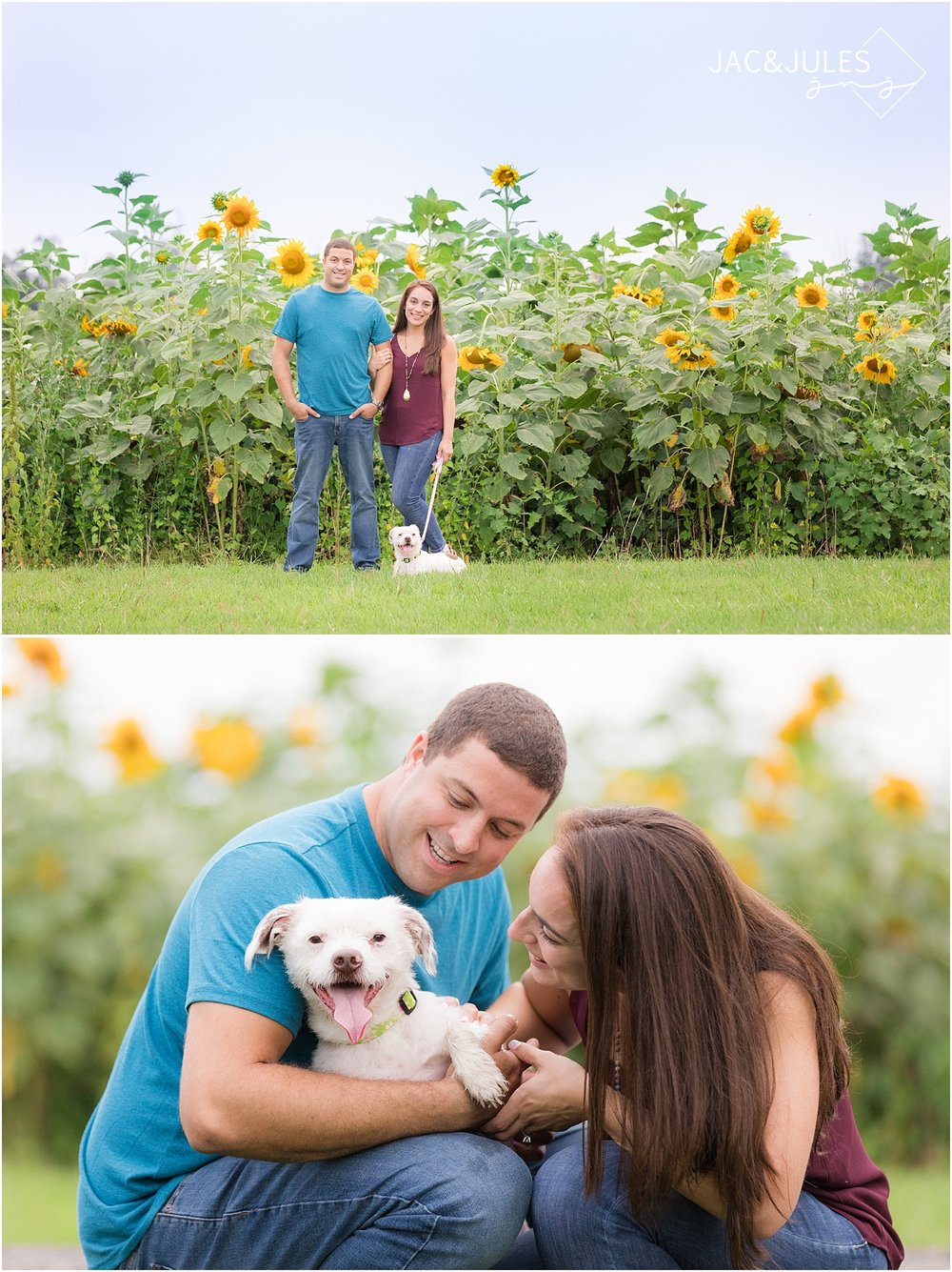 engagement photos with their dog in nj