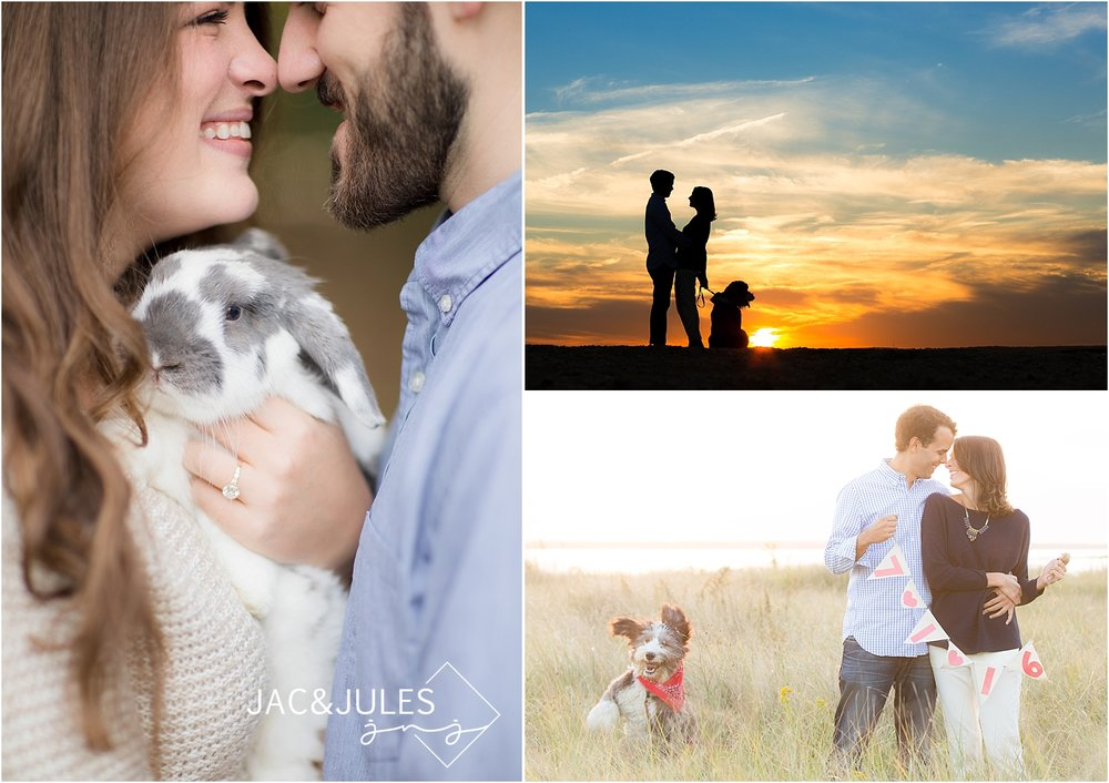 engagement-photo-with-your-pet-rabbit-dog-photo