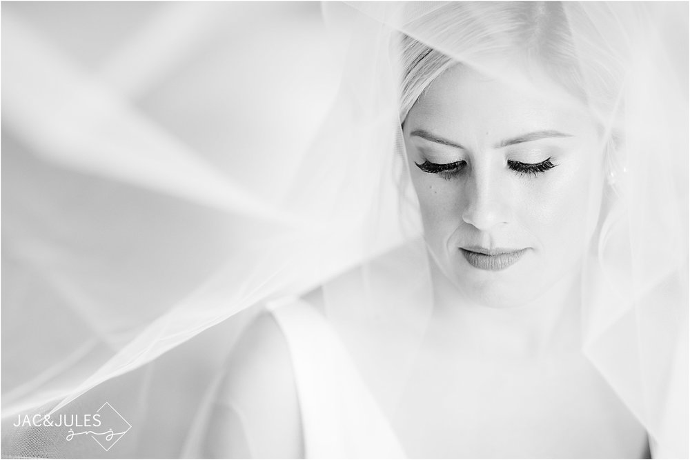 stunning, classic bridal portrait in black and white