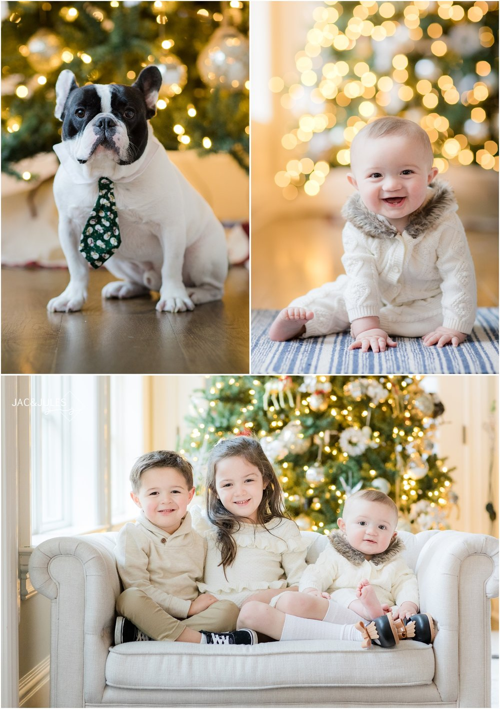 Photo of kids and dog with Christmas tree at home in Toms River, NJ.