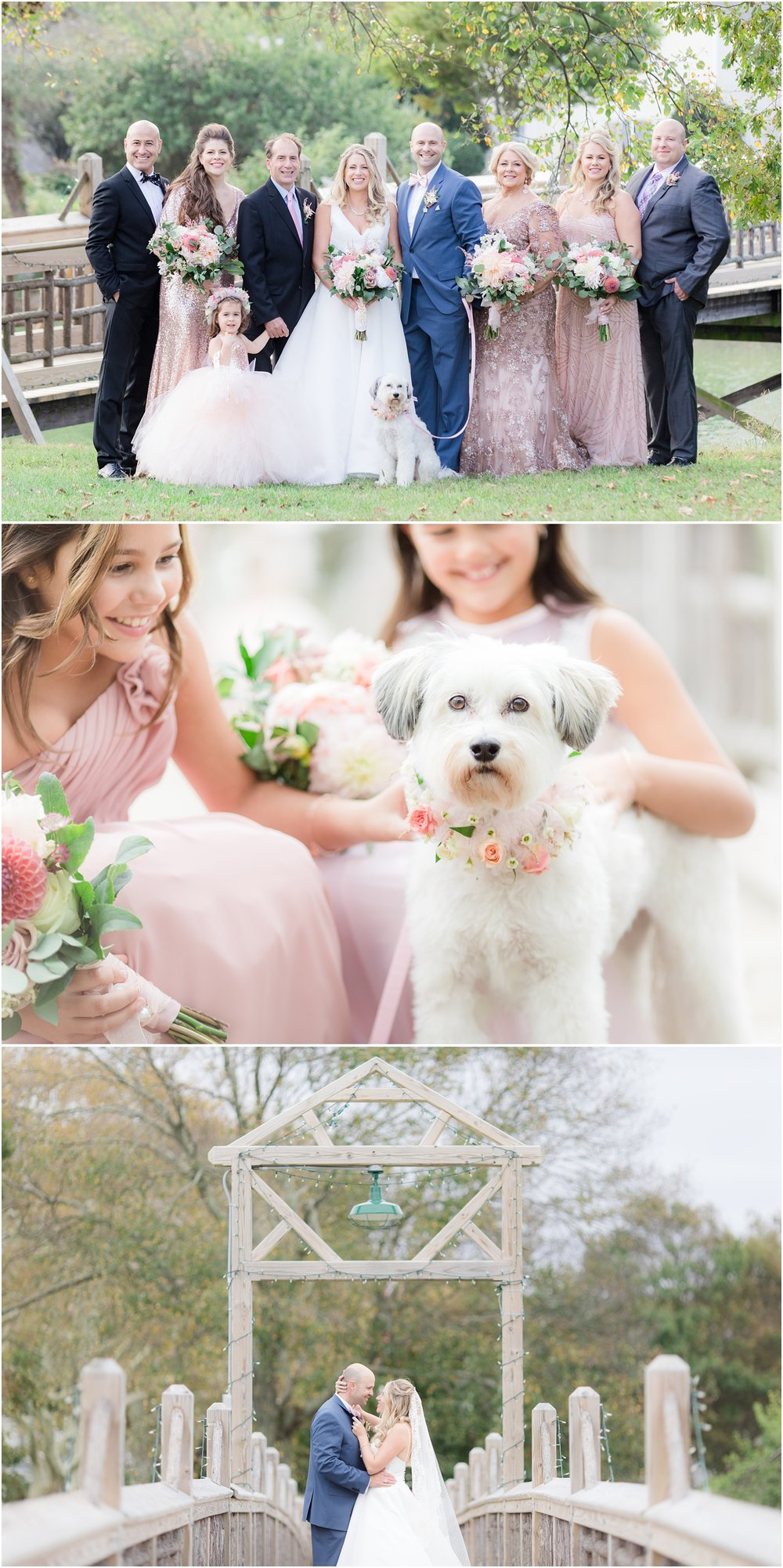 Family photos and dog with flower collar at a wedding in Spring Lake, NJ.