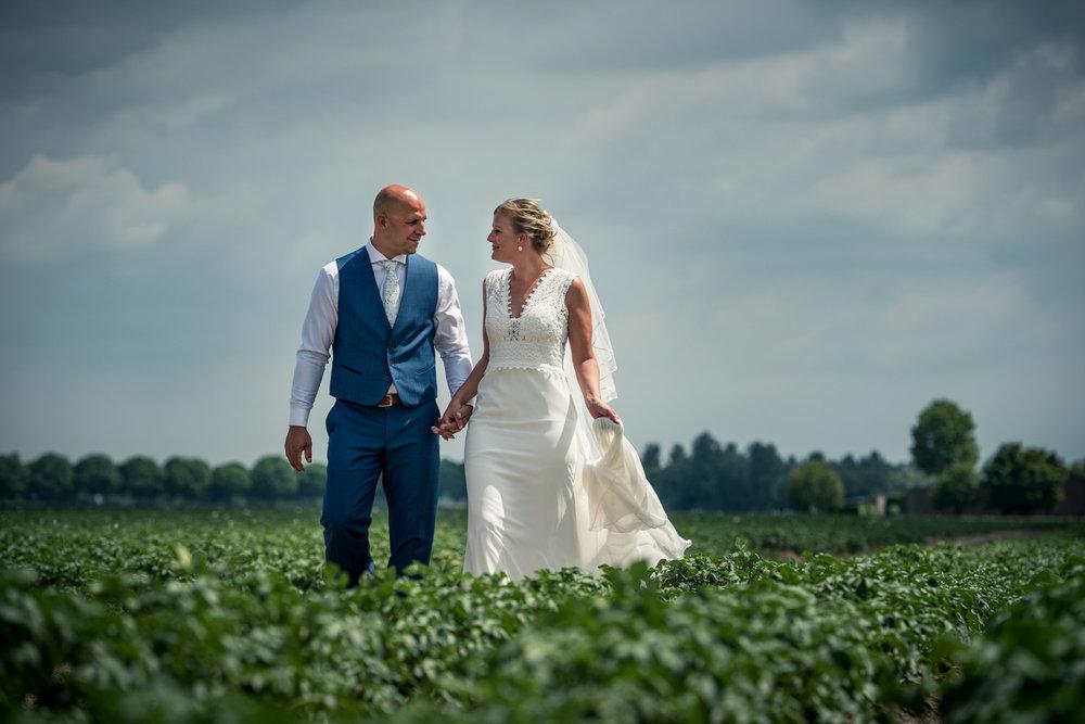 bruidsfotografie in het aardappelveld in West Brabant door Caroline bruidsfotograaf bij Cfoto