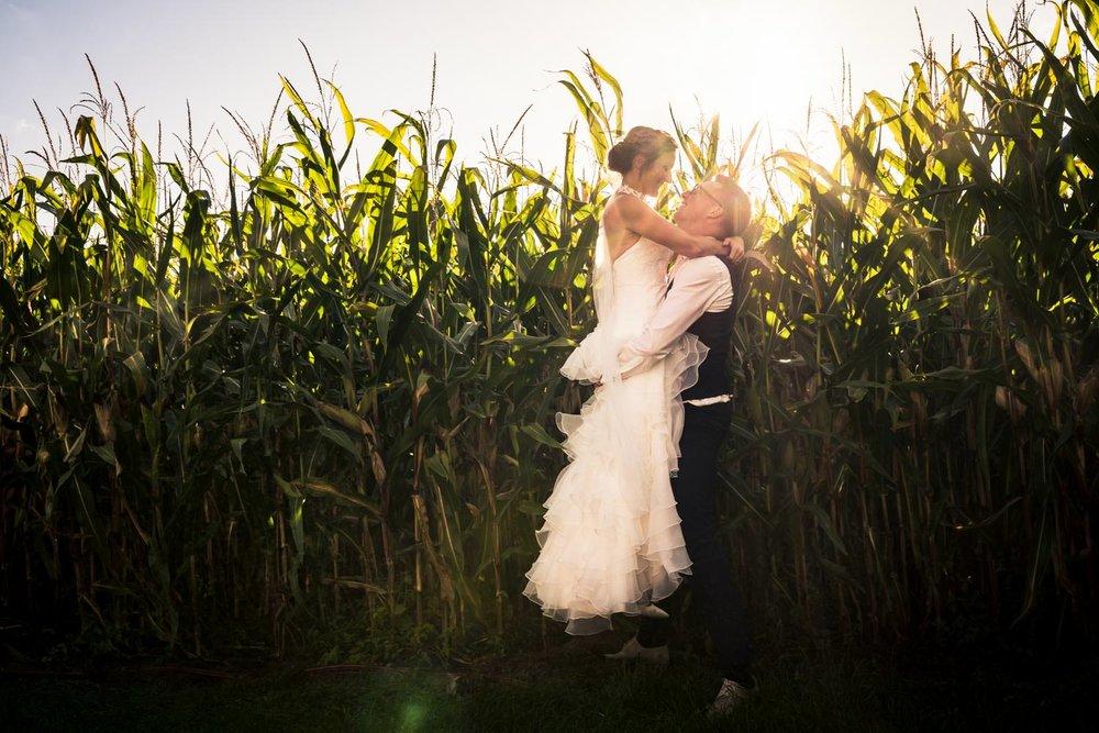 Cfoto maakte een bruidsreportage in de mais met ondergaande zon.