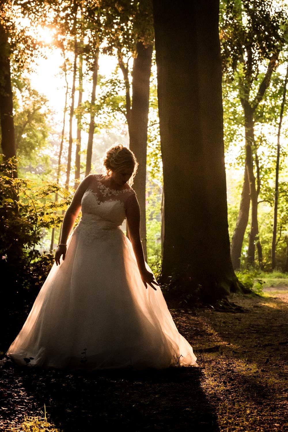 bruid in het avondlicht met prachtige bomen.