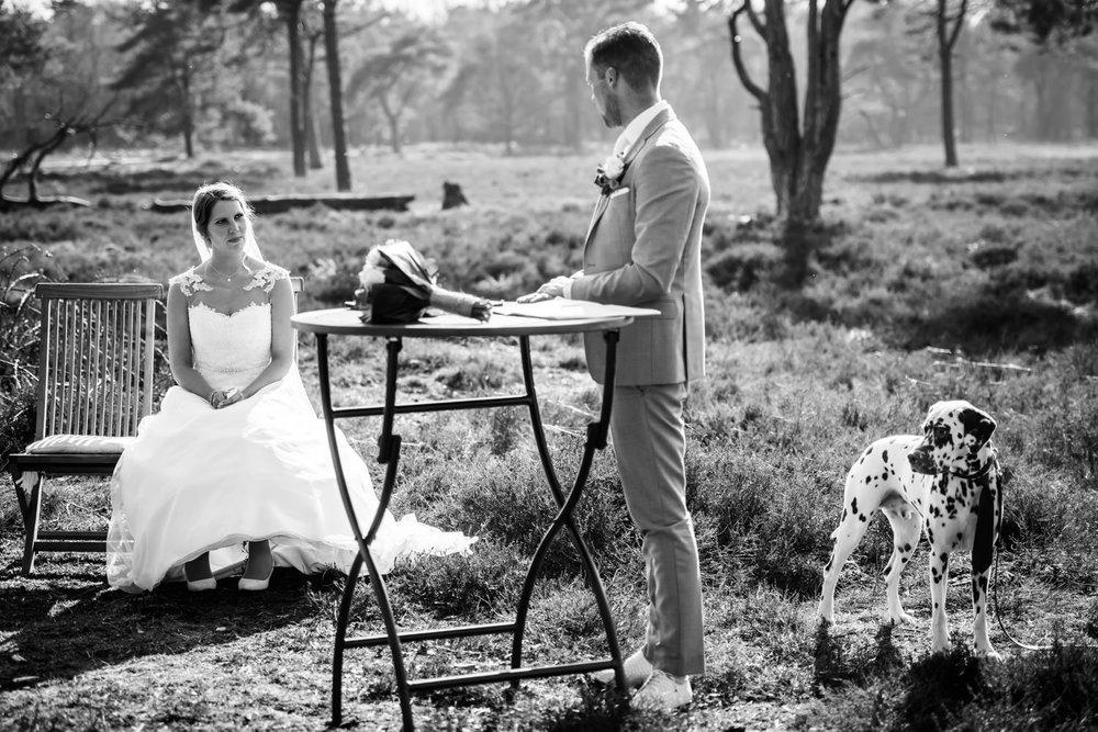 bruidegom-bruid-natuur-dalmatier.jpg