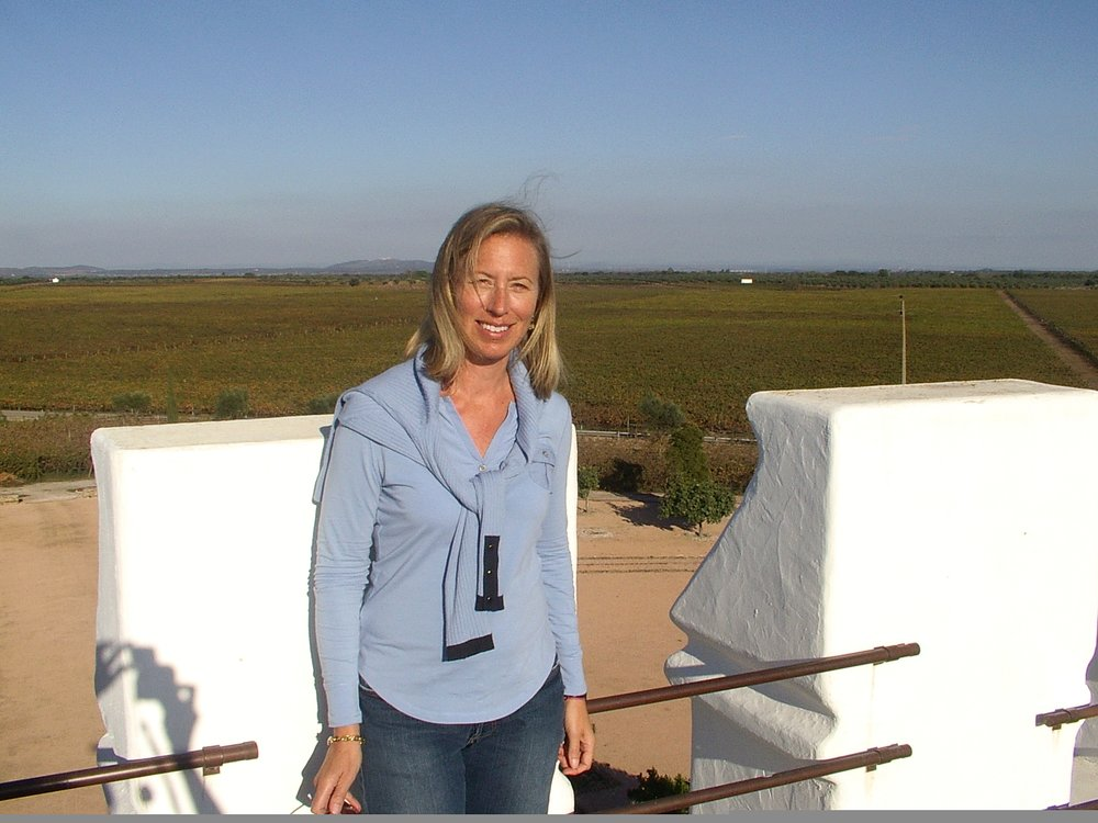 suzanne top of Esperao tower.jpg
