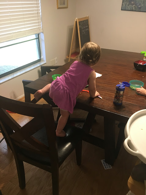 O climbing on table.JPG