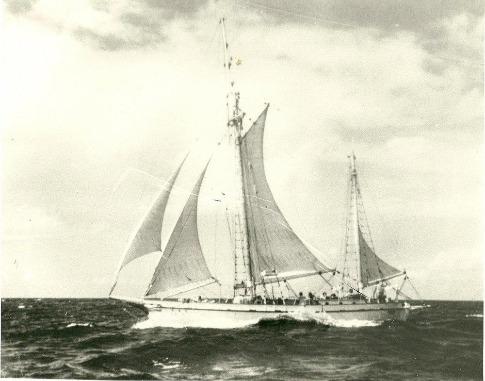 Phoenix  in 1954
