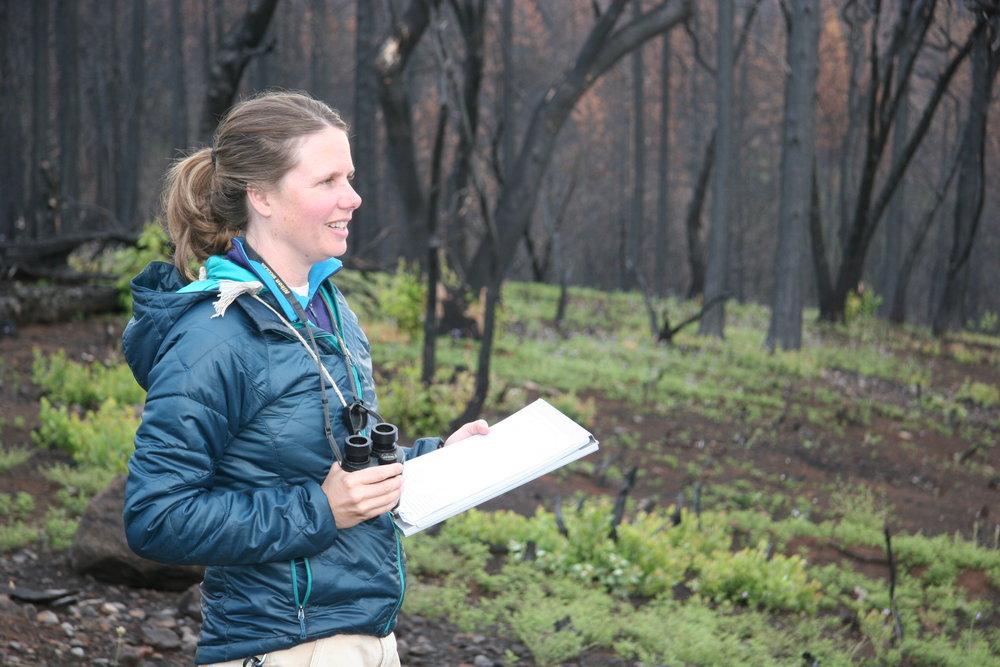 Alissa Fogg, wildlife ecologist, Rim Fire
