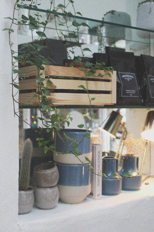 shop-7.jpg