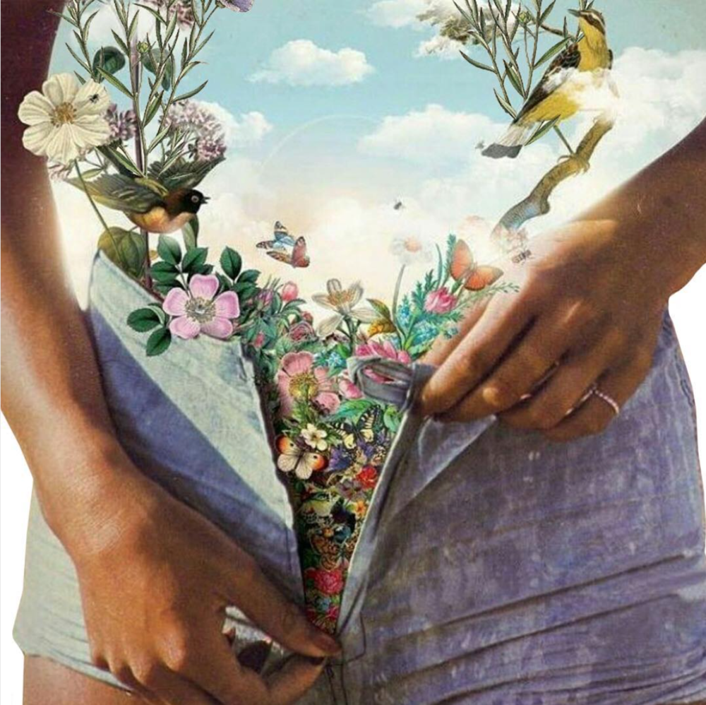 Ayurvedic Herbs, Tools & Movement for your Womb. Artwork by Carlos Bongiovanni