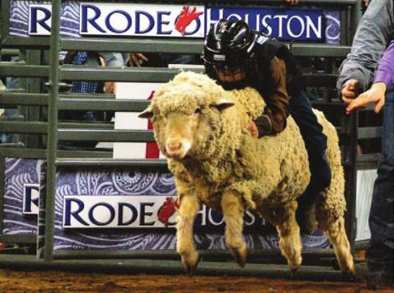 rodeo_houston_2018.jpg