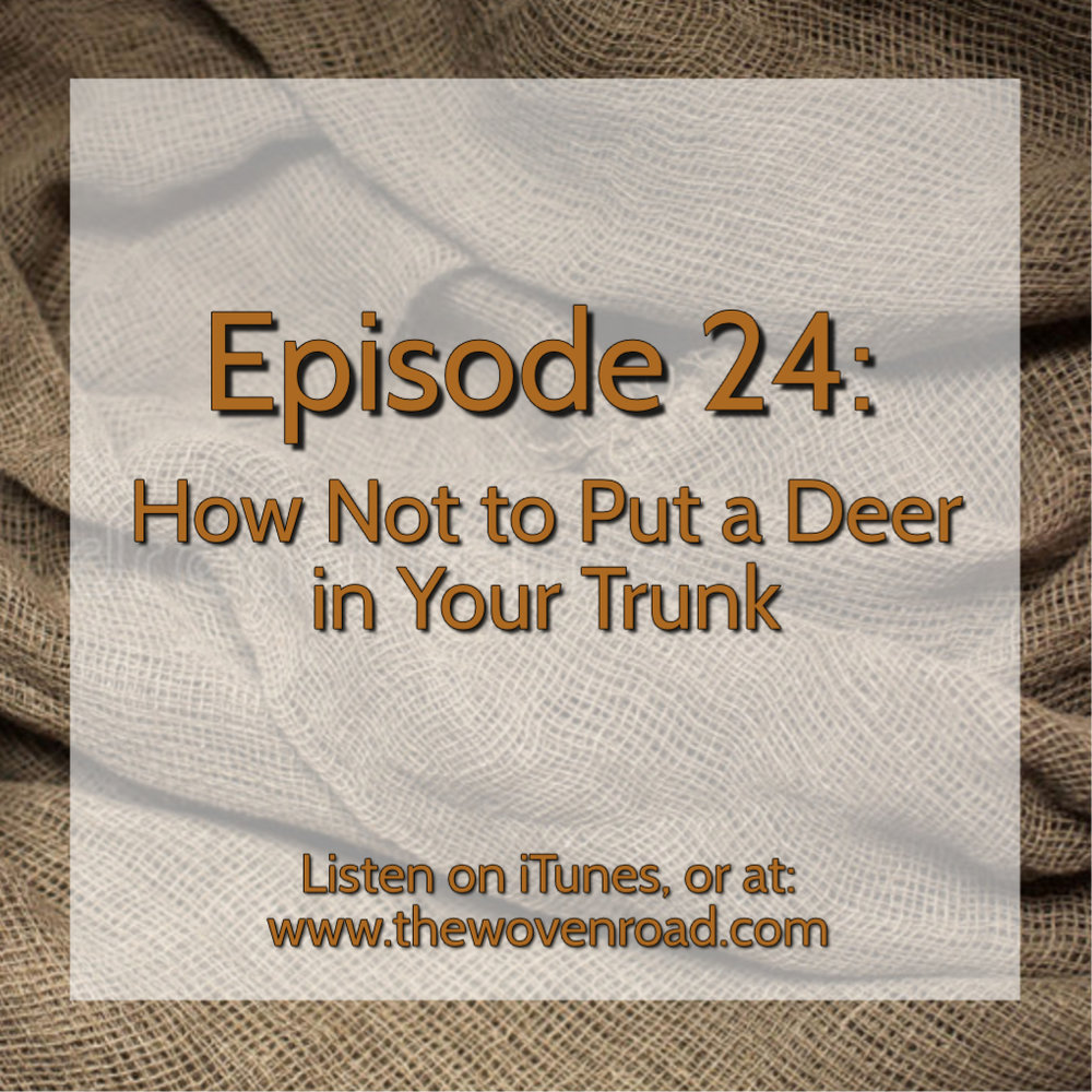 episode24logo.jpg