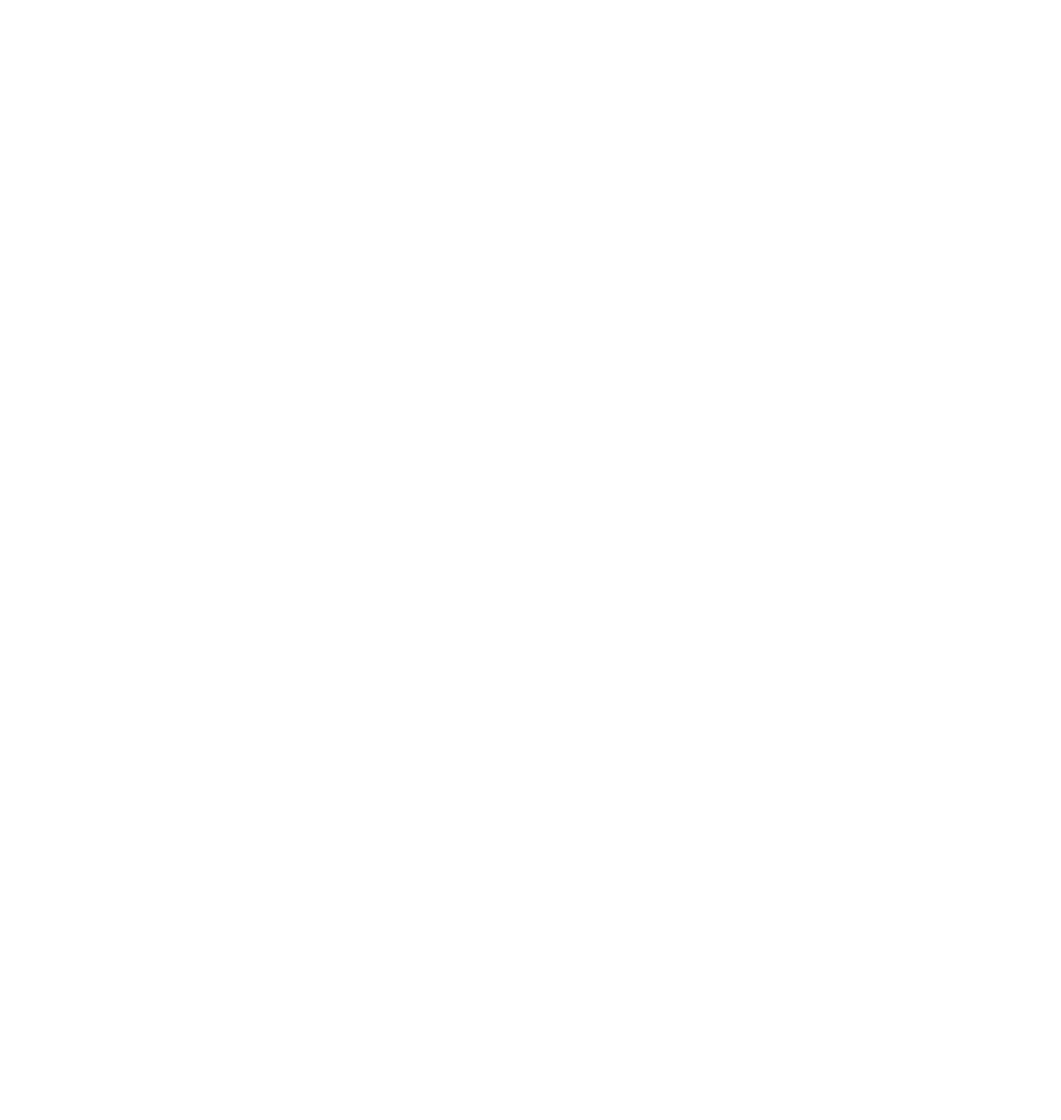 Virgil Corporate Social Responsibility Advising