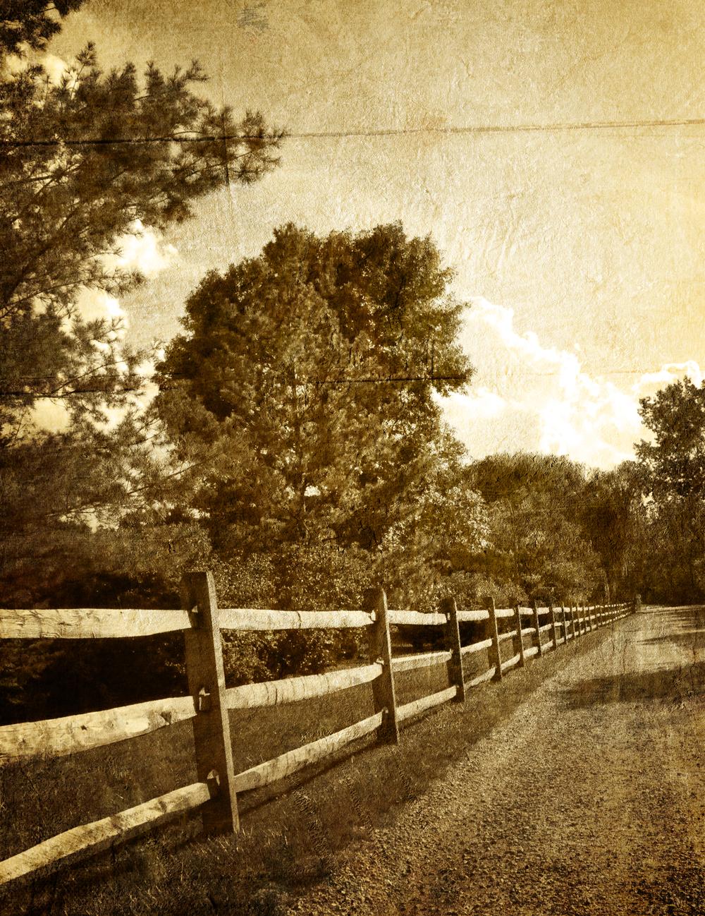 Vintage Fence.jpg