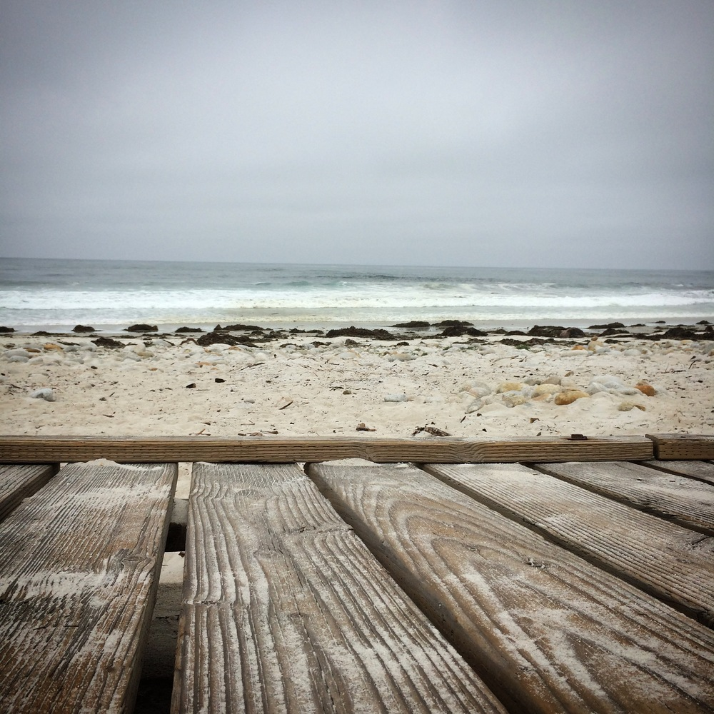 17 mile drive boardwalk.JPG