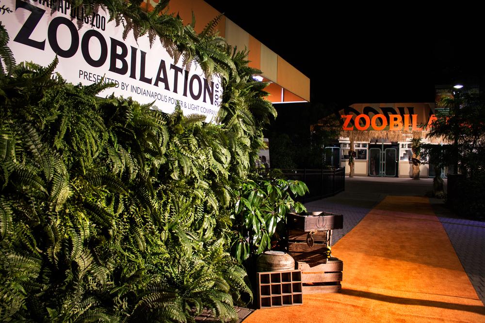 Zoobilation21.jpg