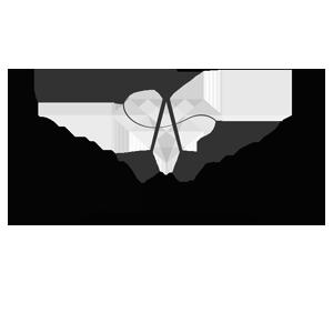 aisling elizabeth color logo.jpg