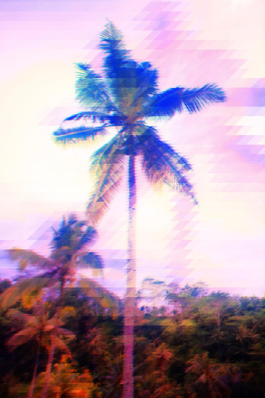 1V4A1901.jpg