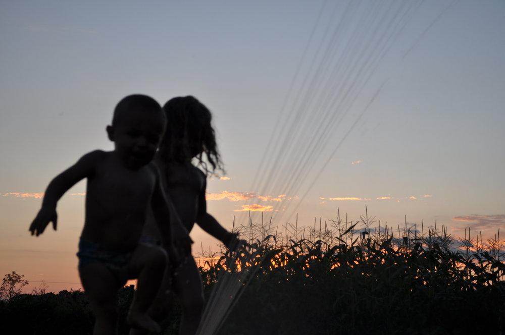 sprinkler sunset.JPG