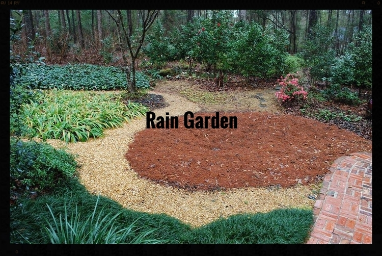 Tallahassee Butterfly rain garden Think about personal pollution TAPP