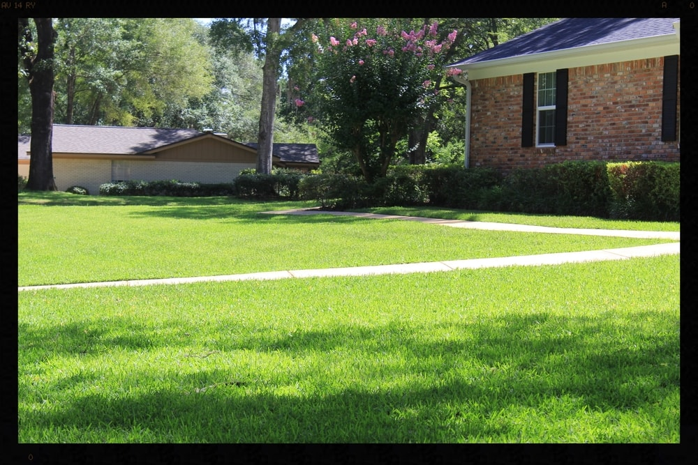 Lawn care is more than just mowing the lawn when the grass looks high.