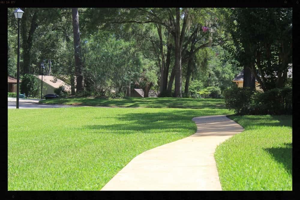 Tallahassee+Lawn+Care+3-min-min.jpg