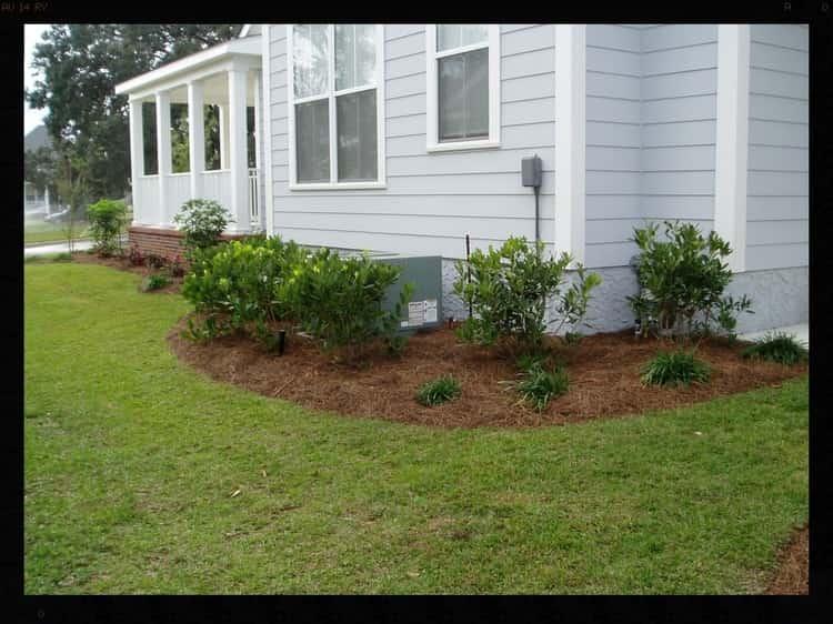Tallahassee+Lawn+Care+(2)-min-min.jpg