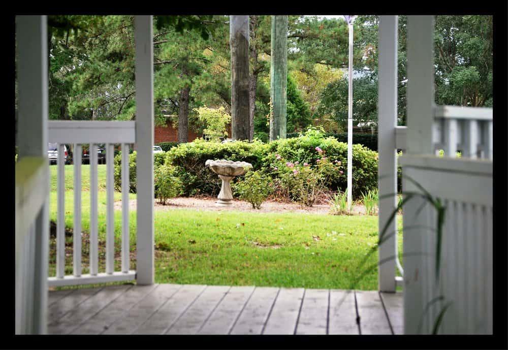 Tallahassee+Lawn+care+provider-min-min.jpg