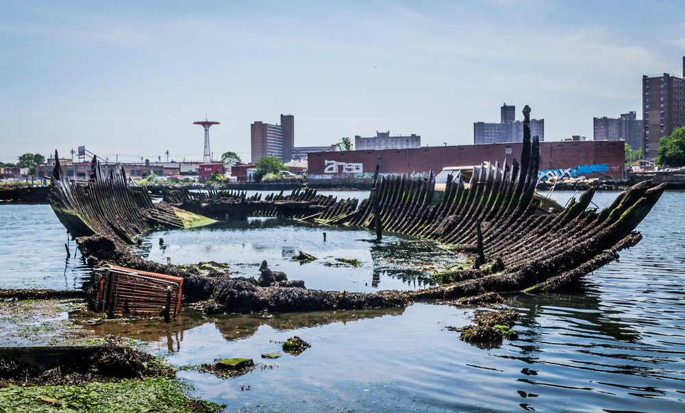This photograph of Coney Island Creek was taken by Candy Delaney of Passionate Perspective Photography and is reproduced here with permission. This tour of Coney Island Creek was organized in collaboration with Underwater NY.